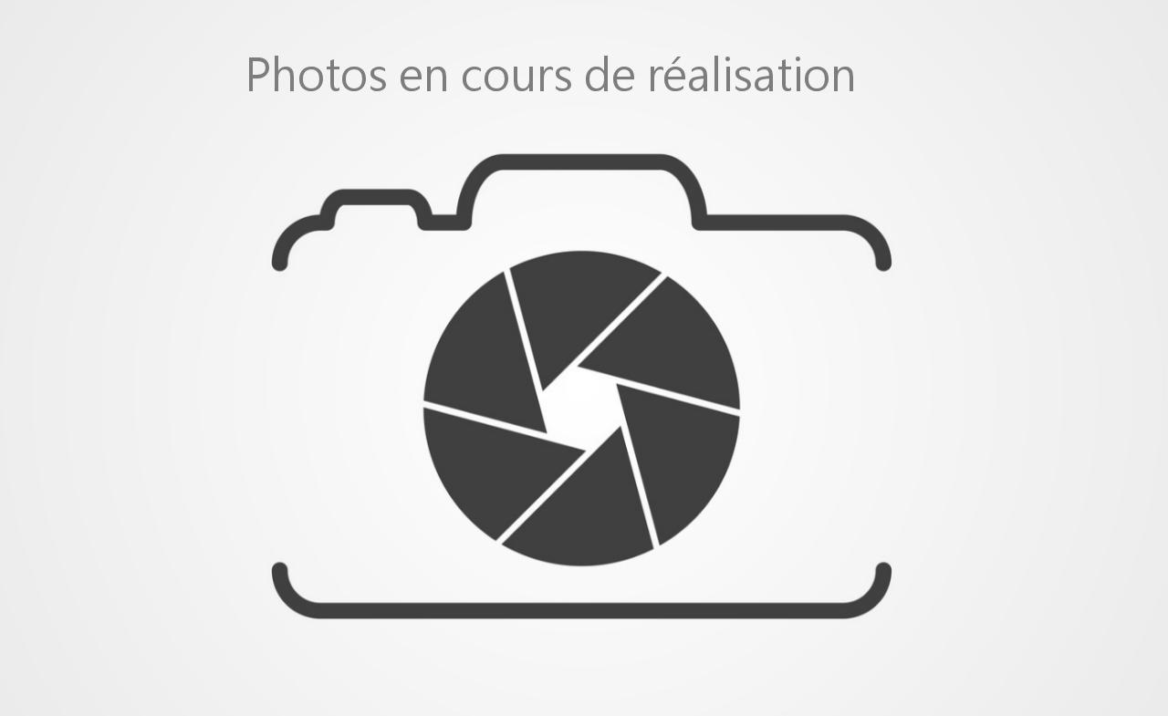RENAULT-CLIO-Clio 1.5 Blue dCi - 115  V BERLINE Intens